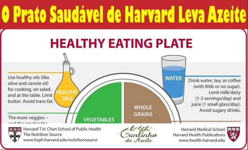 O Prato Saudável de Harvard leva Azeite de Qualidade